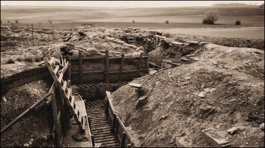 Talk In The Tea Room – Trench Life with Philip Baldock 29th August